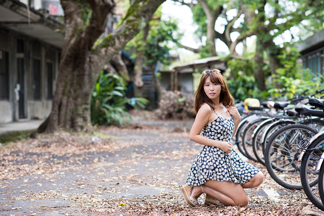 Images Brown haired blurred background Bicycle young woman Asian Dress Bokeh bike bicycles Girls female Asiatic gown frock