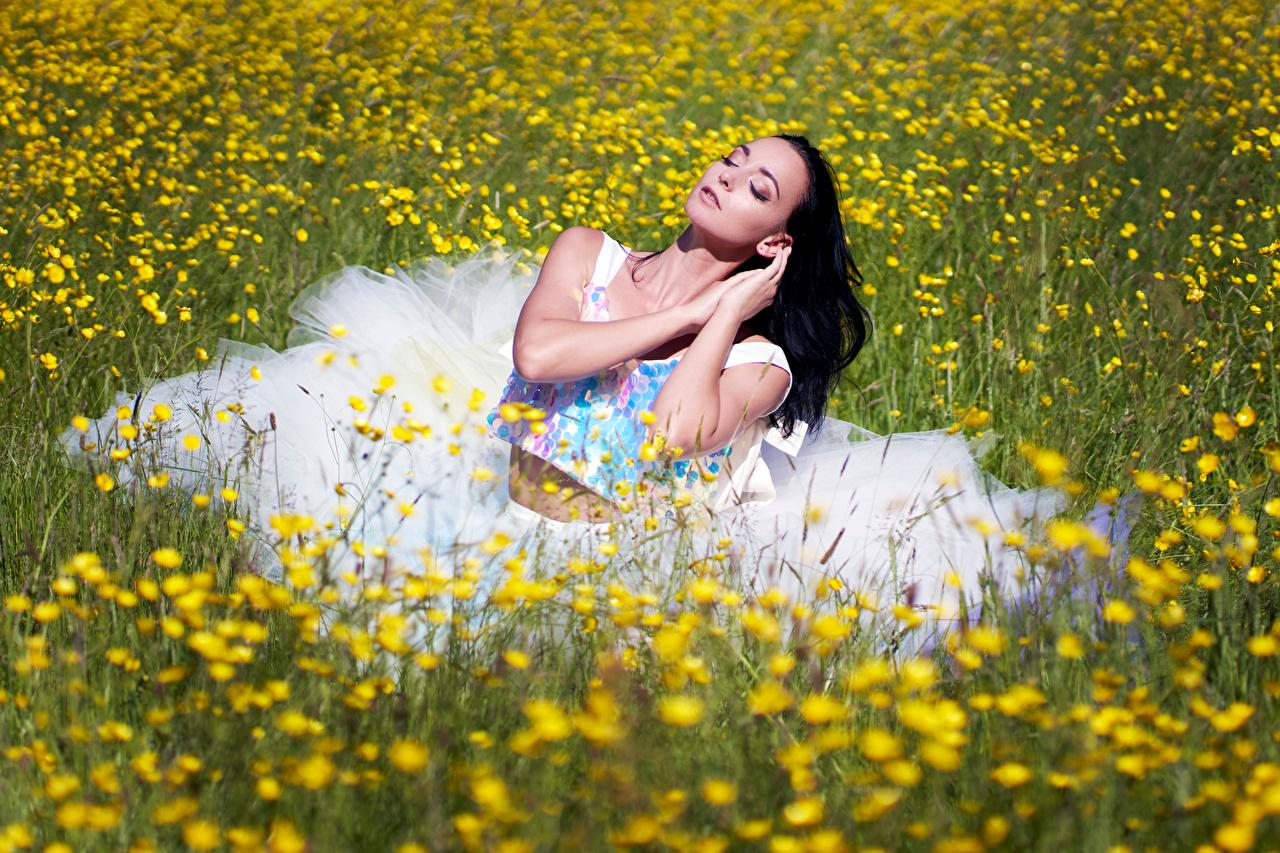Foto Brünette Mädchens Grünland Sitzend Kleid junge frau junge Frauen sitzt sitzen