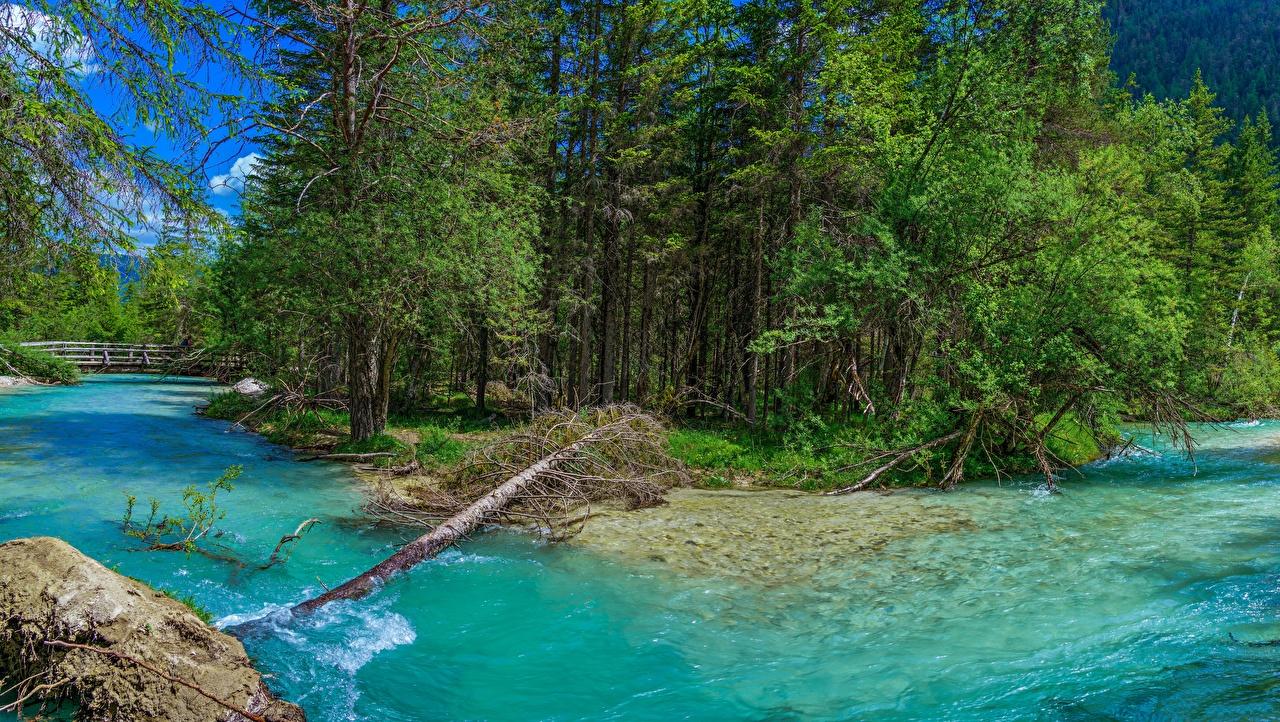 Fotos von Italien Trentino-Alto Adige Natur Flusse Bäume Fluss