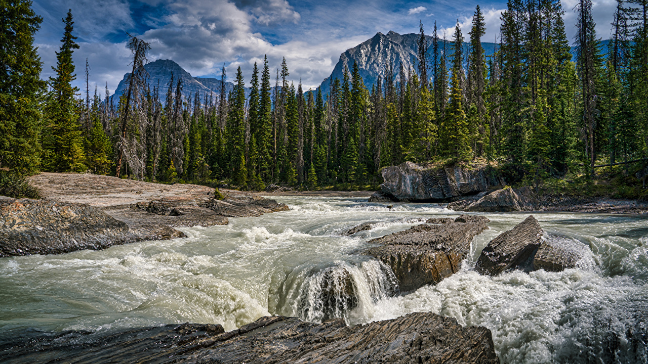 Photo Canada Emerald Lake, Yoho National Park Nature mountain park stone Rivers Trees Mountains Parks river Stones