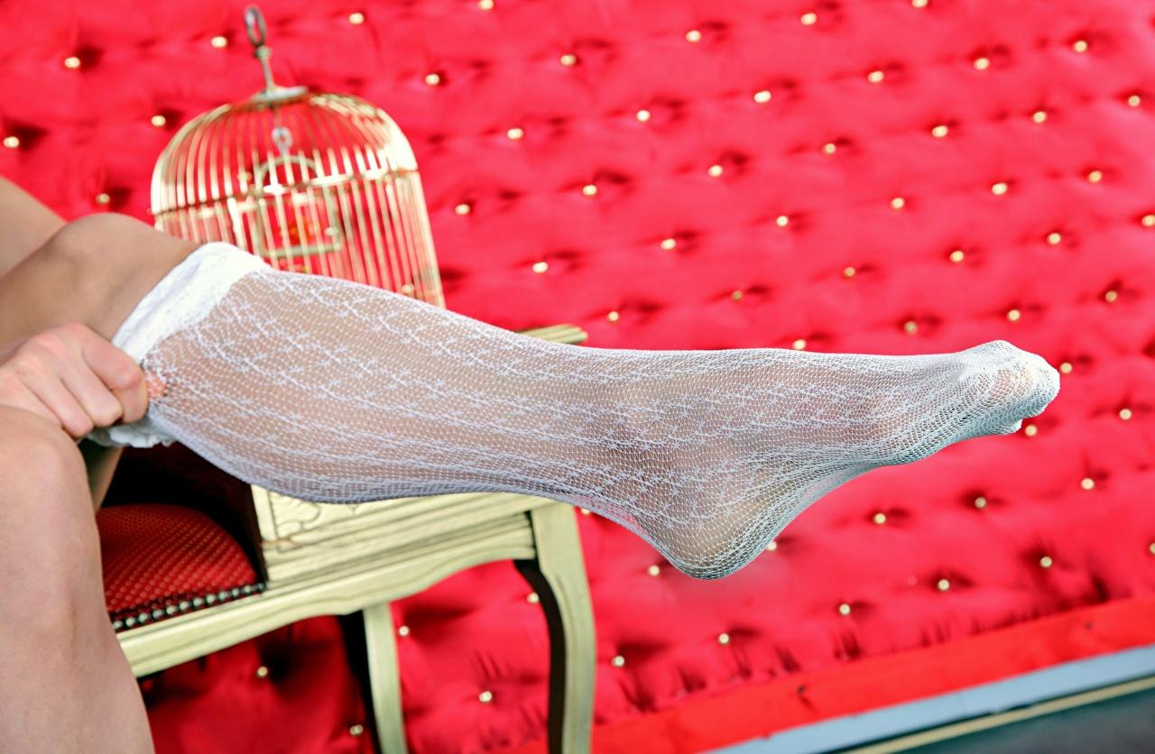 Wallpaper Stockings blurred background young woman Legs Closeup Bokeh Girls female