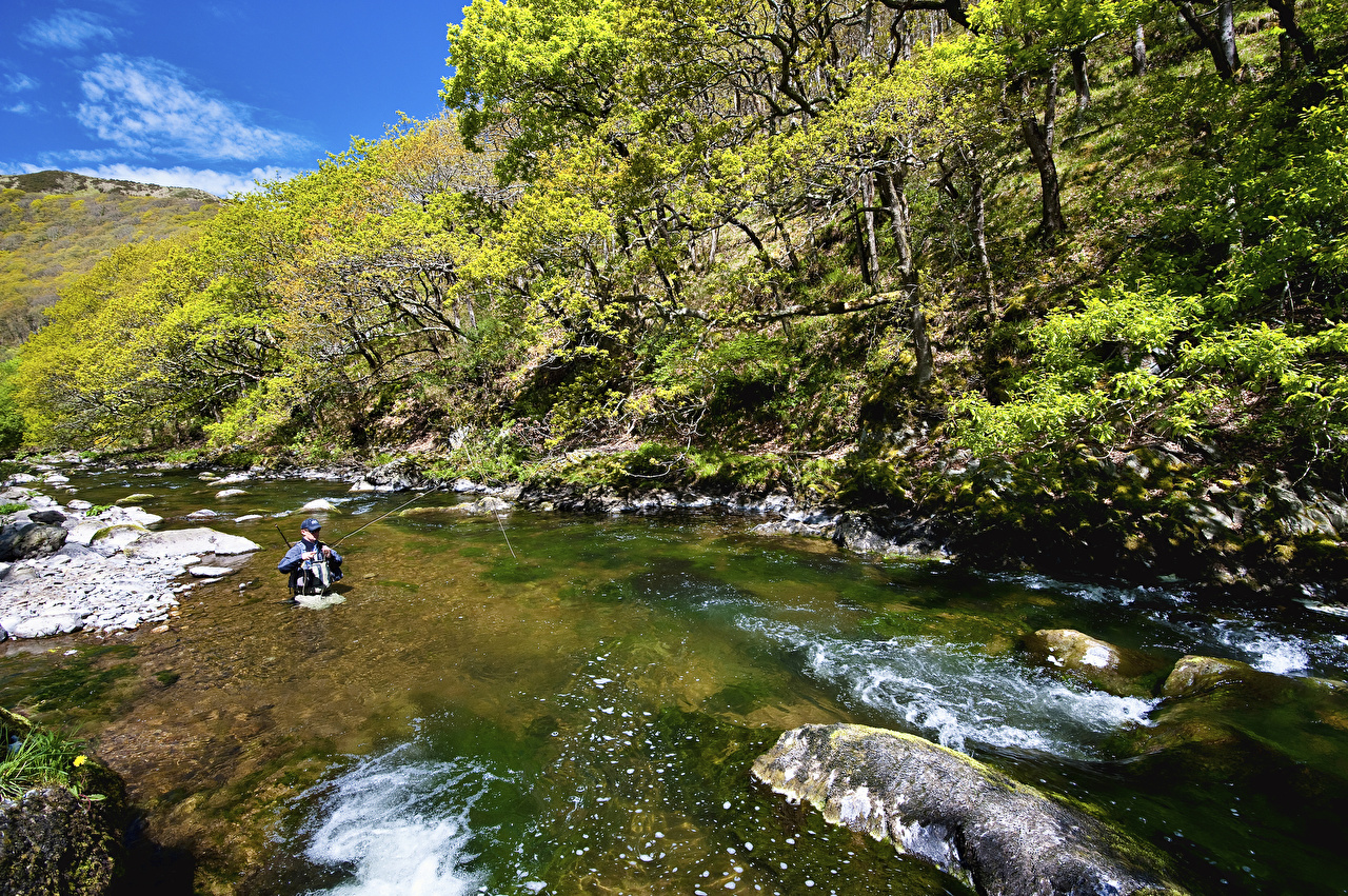 Picture United Kingdom Exmoor National Park Nature Parks Rivers Trees