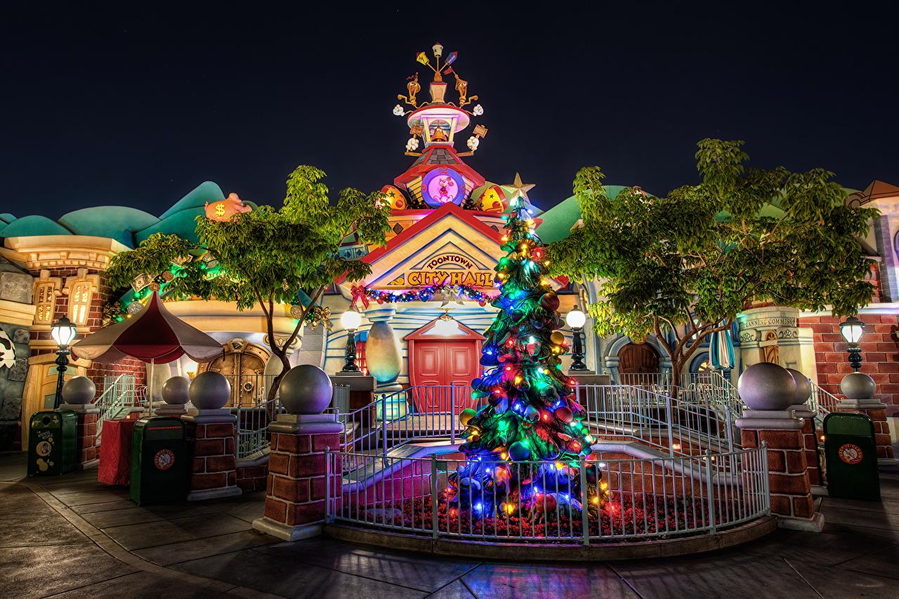 壁紙 アメリカ合衆国 公園 ディズニーランド クリスマスツリー