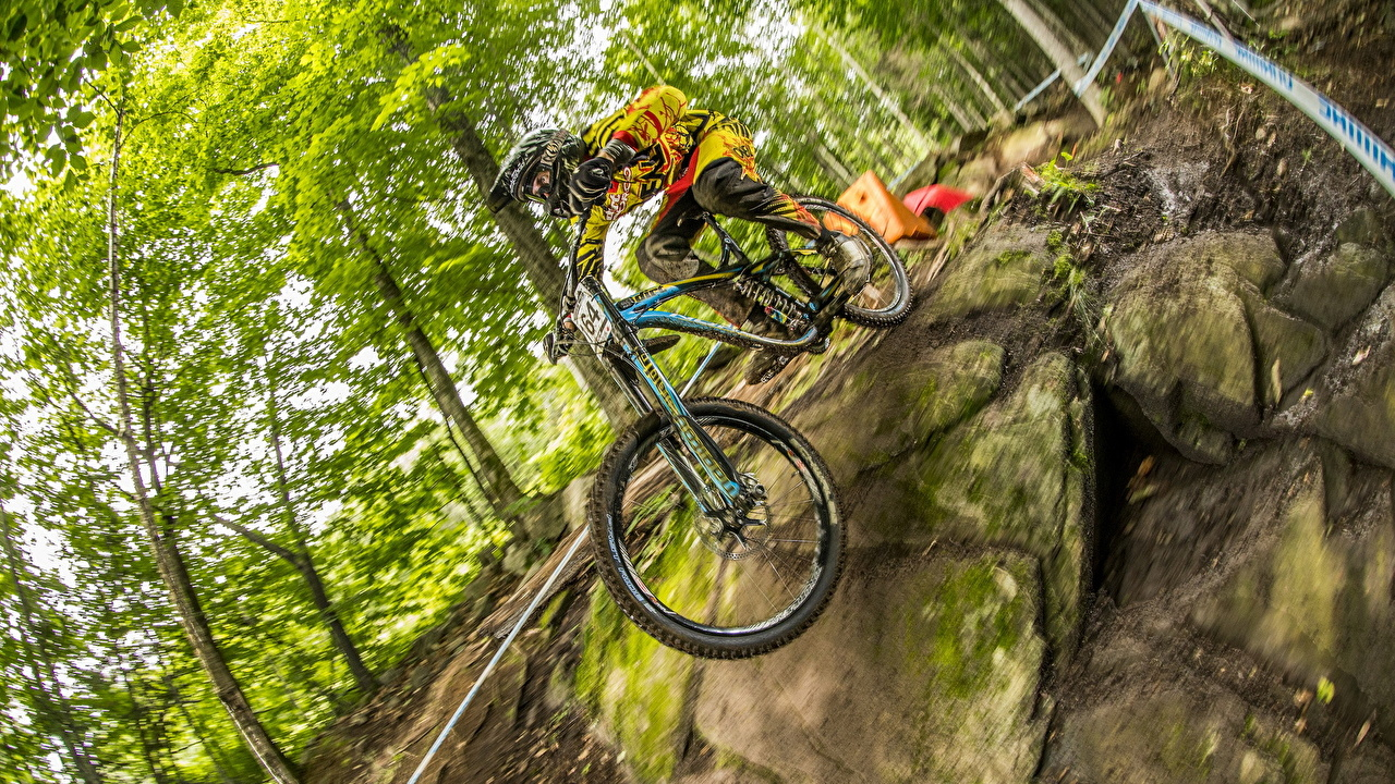 Photos Men bike athletic forest Man Bicycle bicycles Sport sports Forests