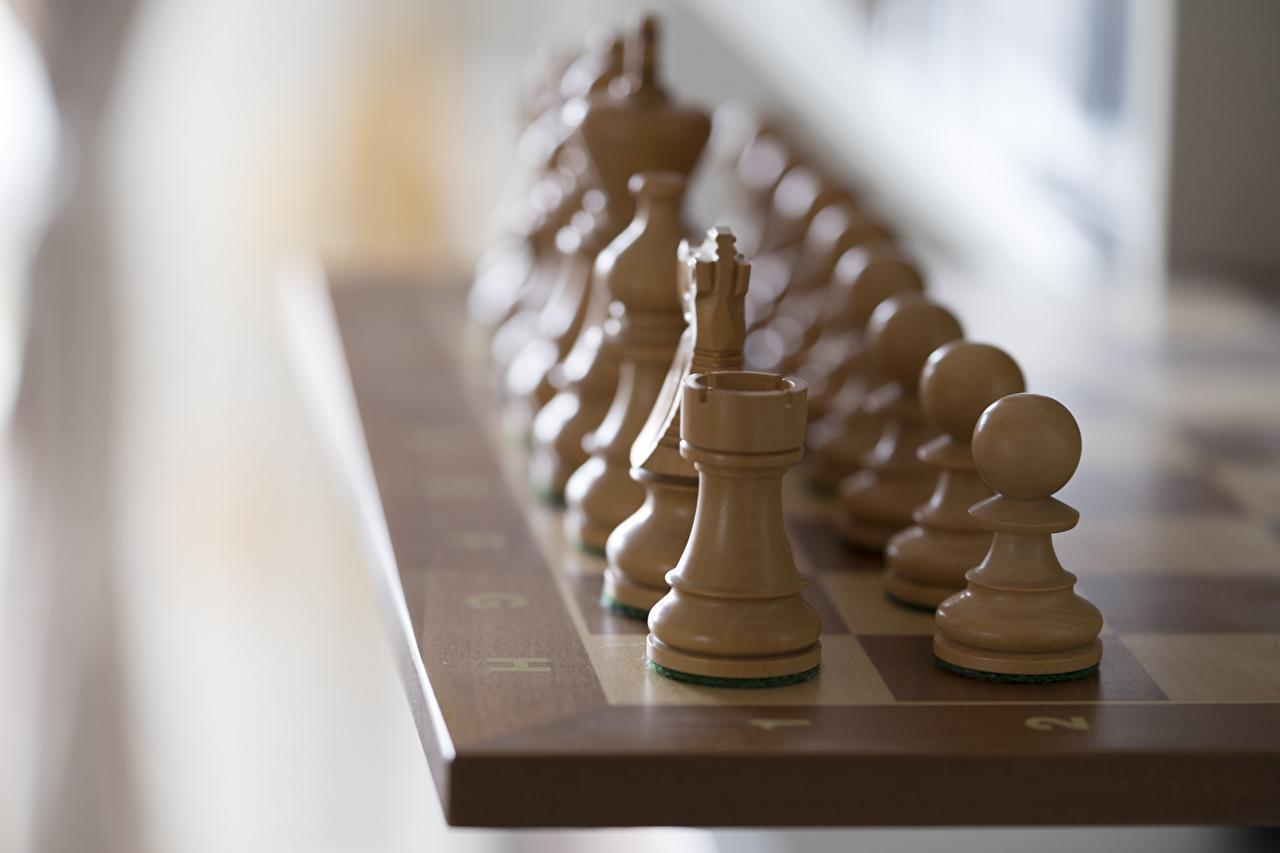 Bilder von Schach Hölzern Großansicht