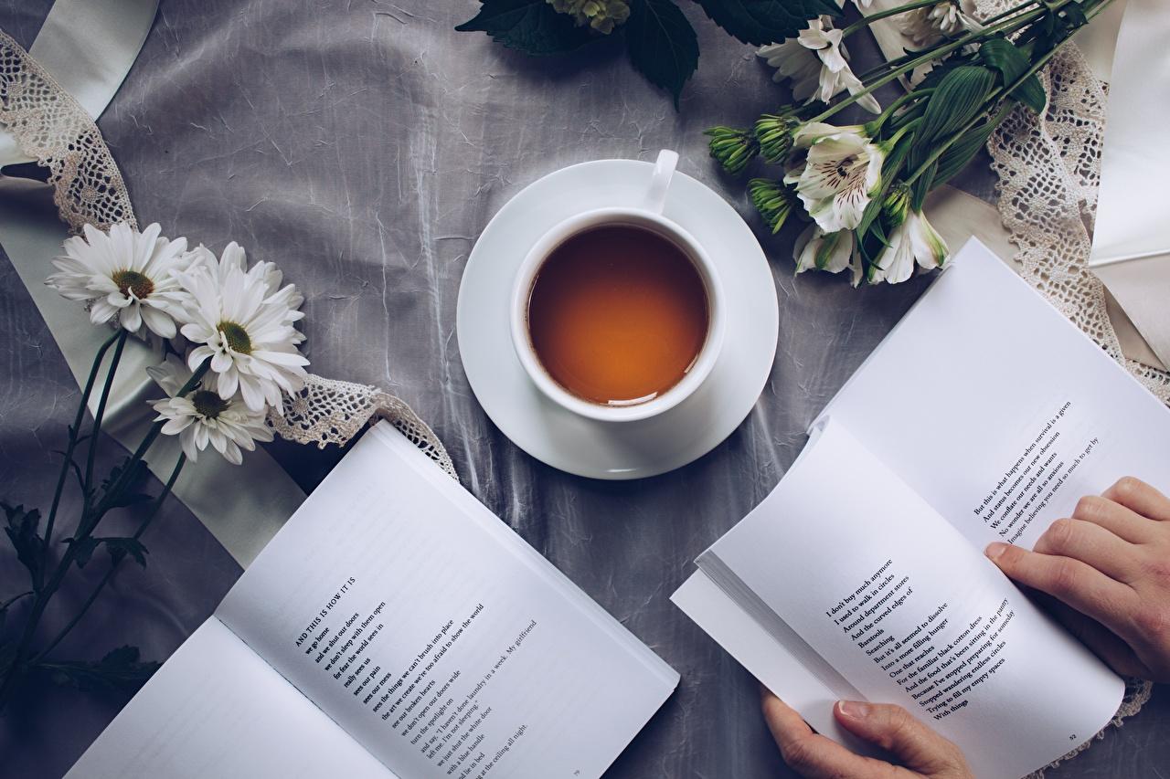 Fotos von Tee Buch Tasse Finger Bücher
