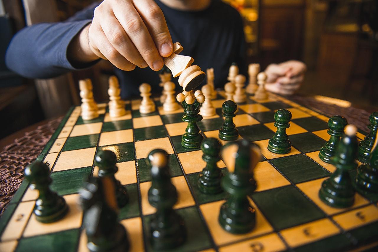 Bilder Schach Hand Großansicht