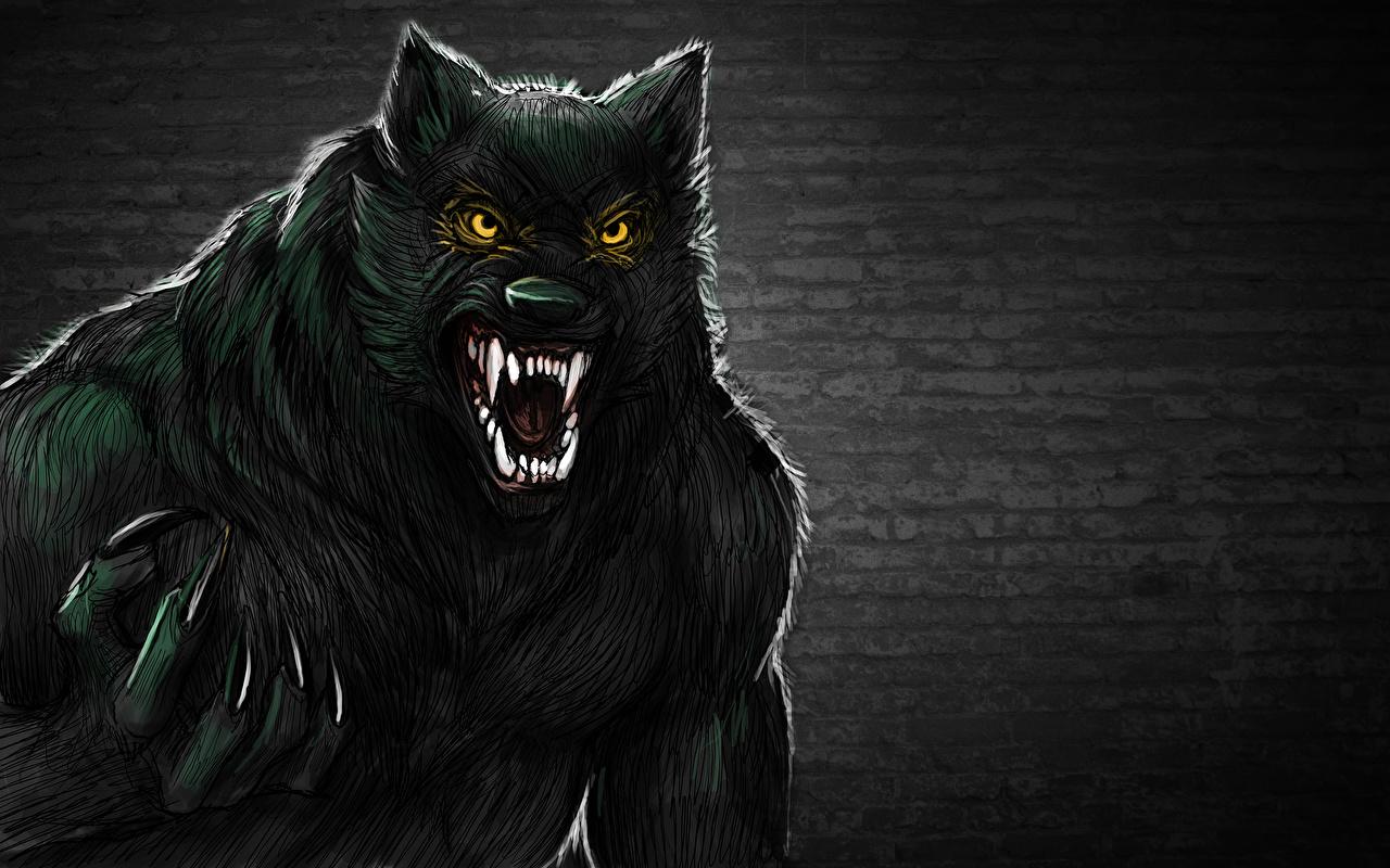 Fondos De Pantalla Monsters Hombre Lobo Fantasía