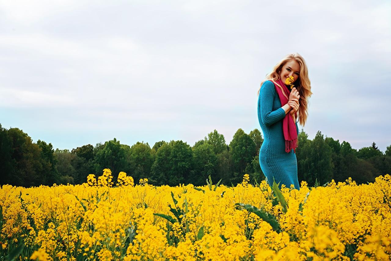 Fotos Blondine Schal Lächeln Raps Mädchens Felder Kleid Blond Mädchen junge frau junge Frauen Acker