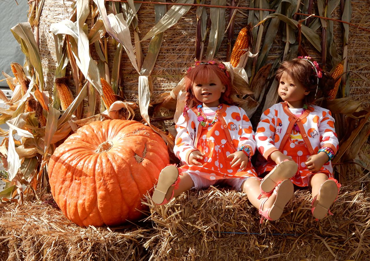 Pictures Hay Parks Two Grugapark Essen  Doll Corn Pumpkin Little girls Autumn Nature park 2