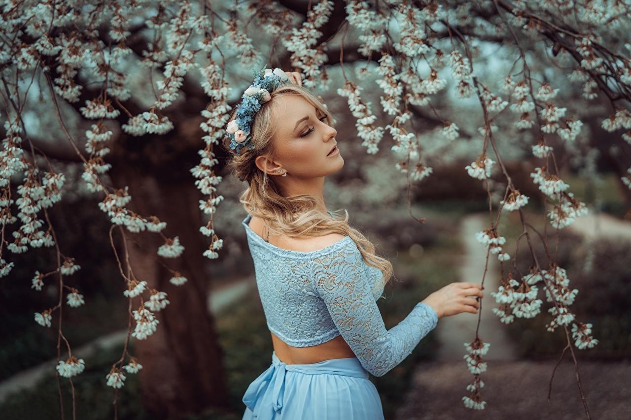 Foto Blondine Bokeh Kranz Frühling Mädchens Ast Blond Mädchen unscharfer Hintergrund junge frau junge Frauen