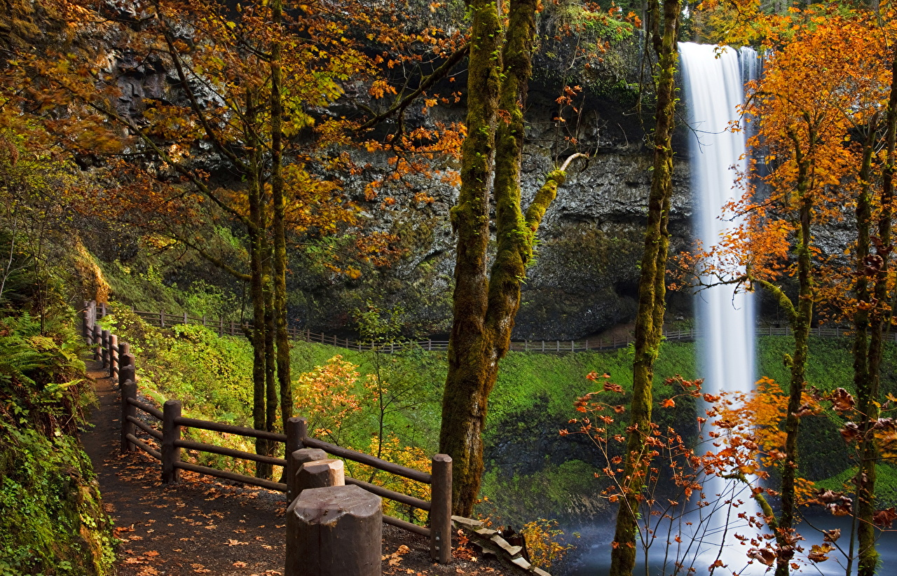 Bilder USA Silver Falls City Oregon Høst Natur En sti En foss Stamme Gjerde amerika fosser gjerder