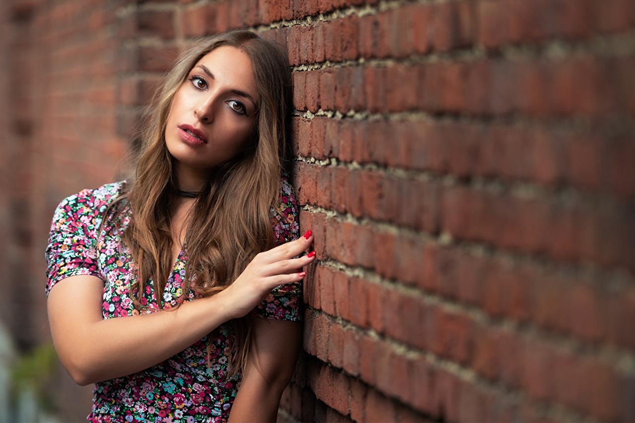 Fotos von Braune Haare unscharfer Hintergrund Pose Haar junge frau Aus Ziegel Hand Mauer Blick Braunhaarige Bokeh posiert Mädchens junge Frauen aus backsteinen wand wände Starren