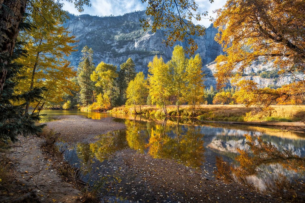 Bilder Yosemite USA Merced River Natur Herbst Gebirge Flusse Bäume Vereinigte Staaten Berg Fluss