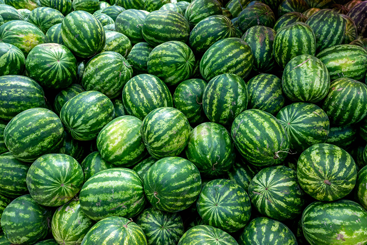 Photos Texture Watermelons Food Many
