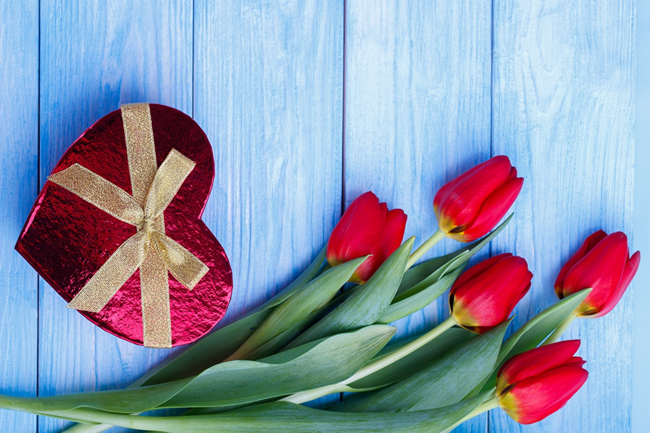 Wallpaper Valentine's Day Heart Tulips Flowers Bowknot Wood planks bow Boards
