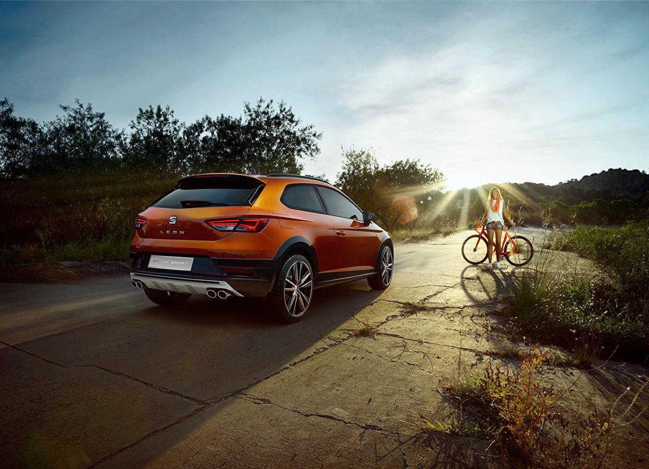 Picture Seat 2015 Leon Cross Sport Concept Orange Back view automobile Cars auto