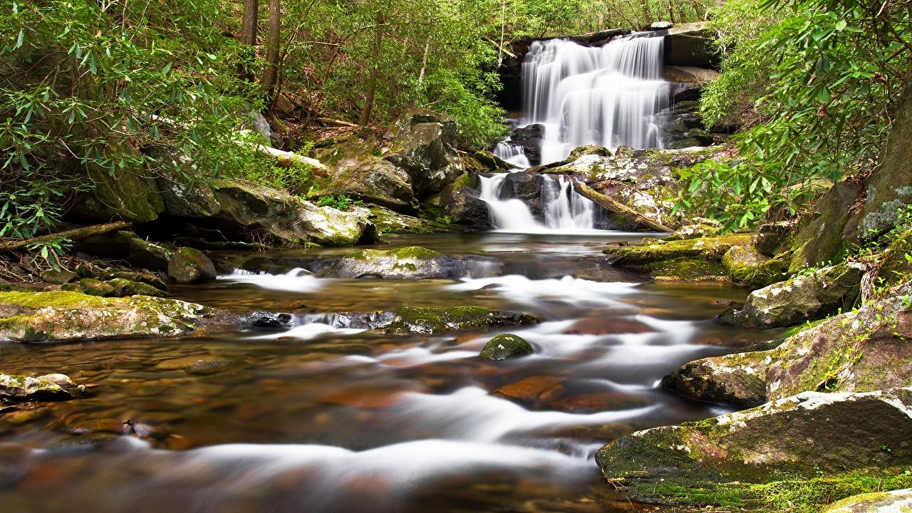 Picture Nature Stream Waterfalls Moss Stones Creek brook Creeks Streams stone