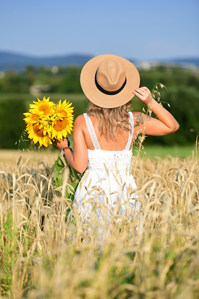 Picture Selina bouquet Hat female flower Fields Helianthus Hands Back view gown  for Mobile phone Bouquets Girls young woman Flowers Sunflowers Dress frock