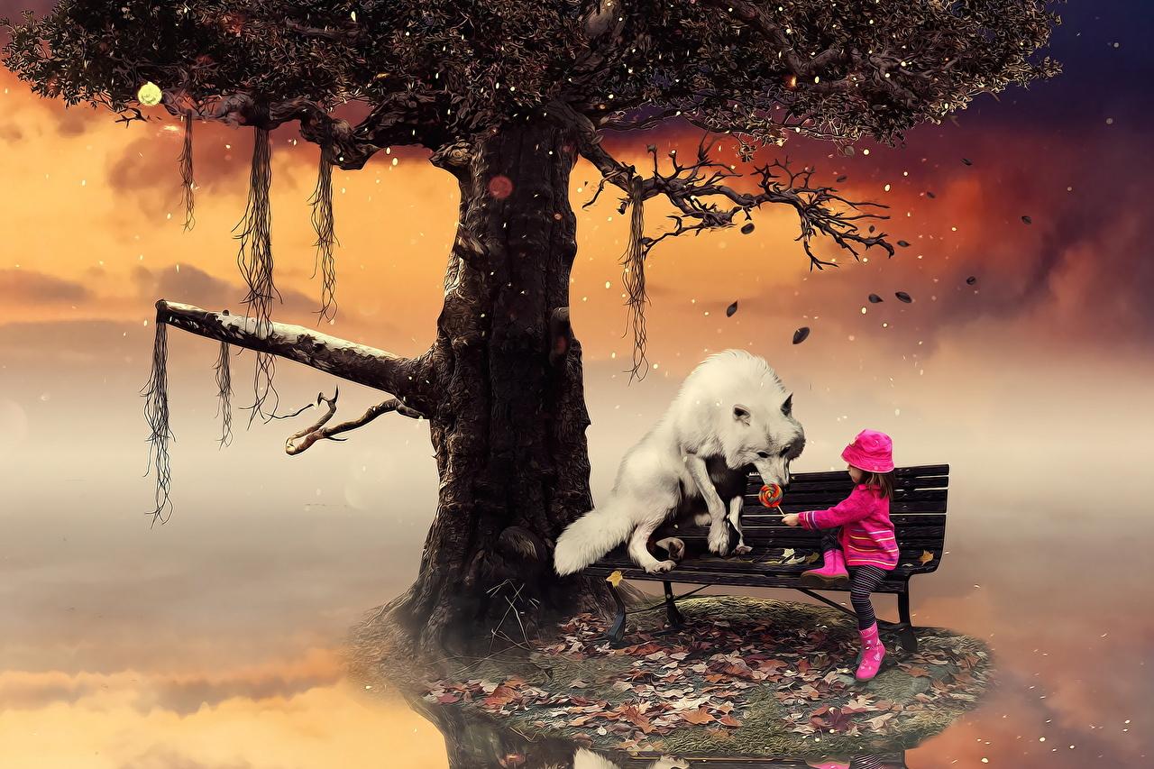 Фотографии девочка волк тумане ребёнок Фэнтези Скамейка дерево животное Девочки Волки Дети Туман тумана Фантастика Скамья дерева Деревья деревьев Животные