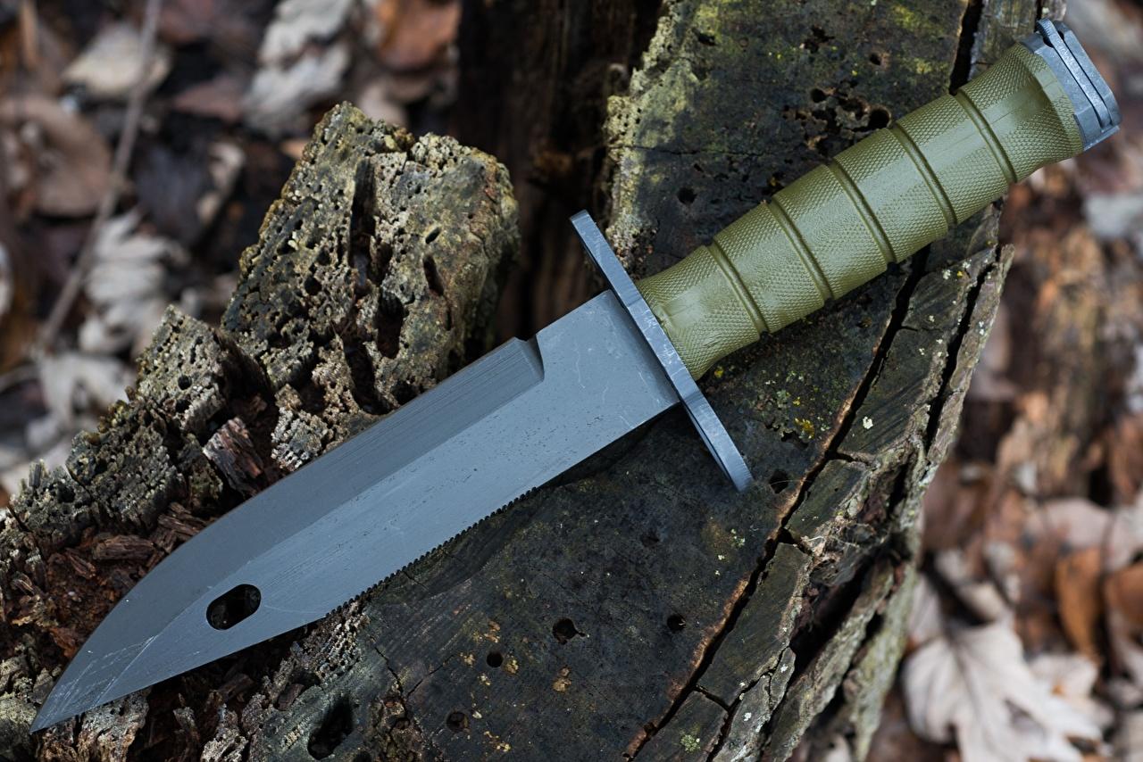 Fotos Messer M9 Bayonet Großansicht Heer