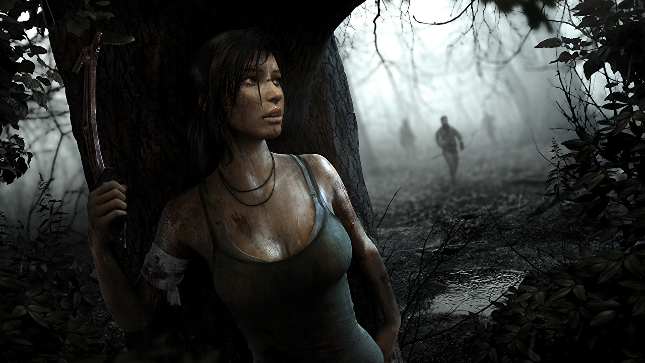 tomb raider 2013 lara