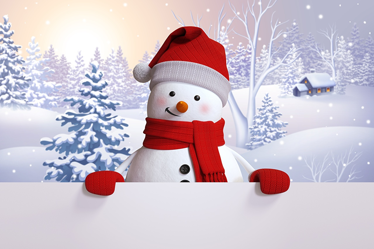 Photo Winter hat 3D Graphics Snow Snowmen