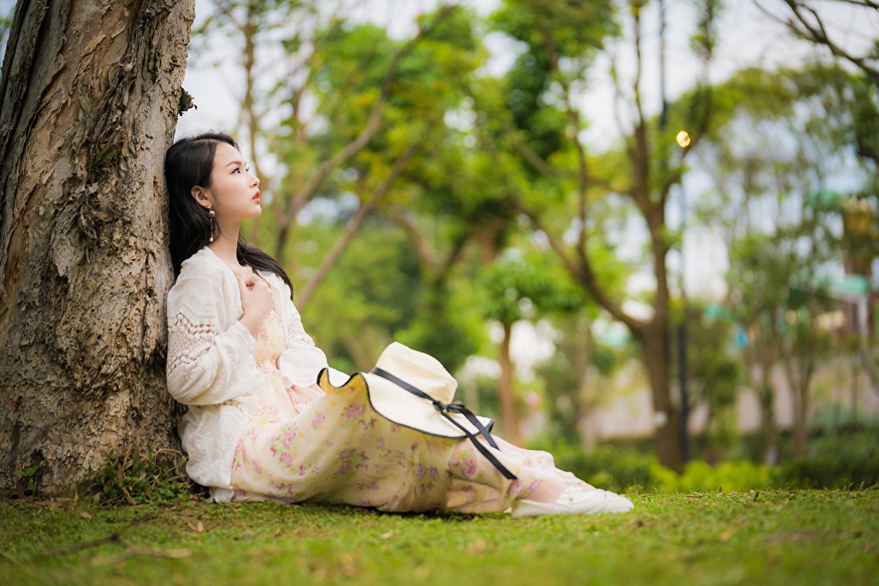 Fotos von unscharfer Hintergrund Der Hut junge frau Asiatische Sitzend Kleid Bokeh Mädchens junge Frauen Asiaten asiatisches sitzt sitzen