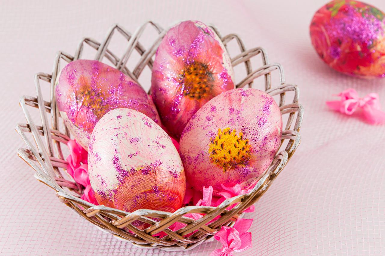 Images Easter egg Design Colored background Eggs