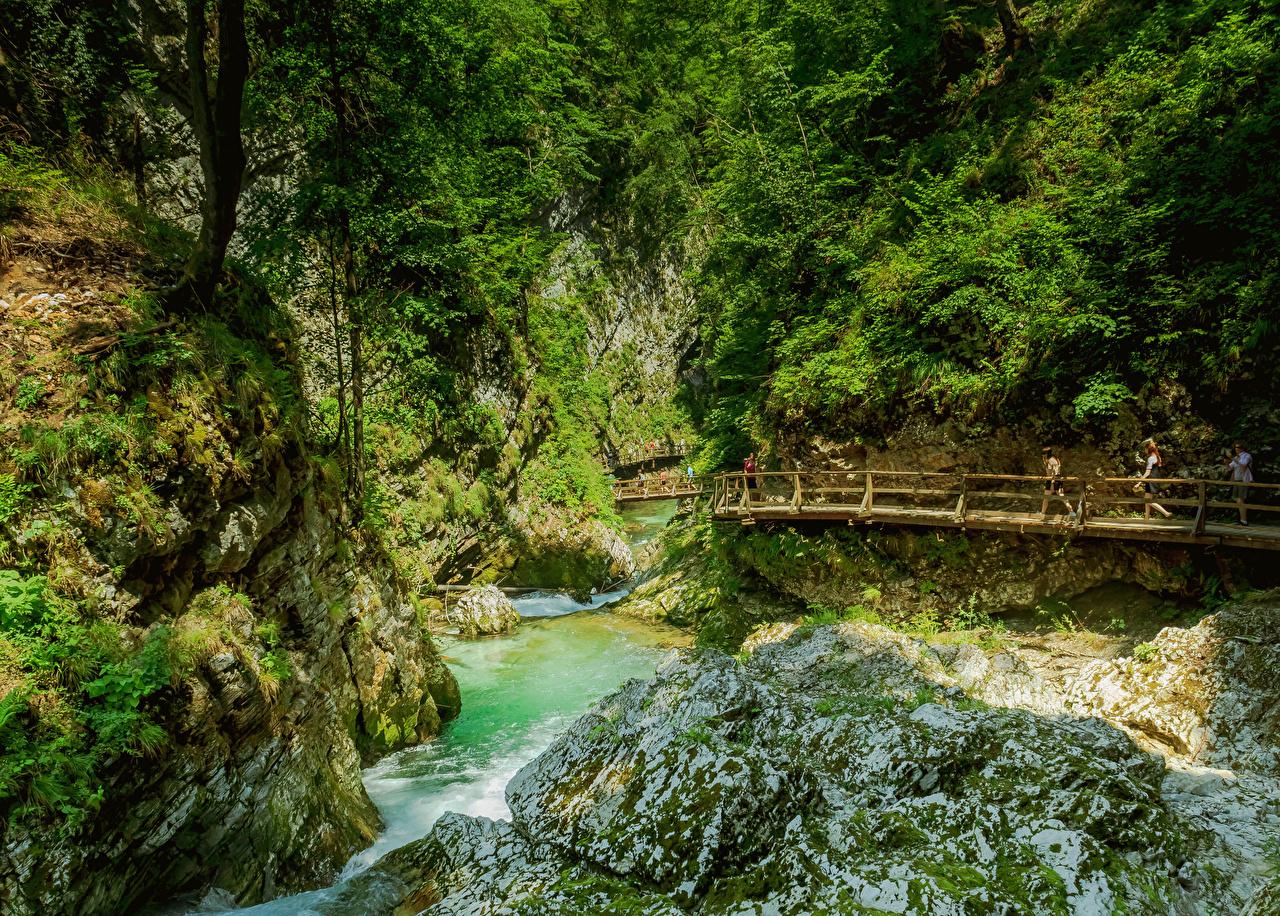 Tapeta na pulpit Słowenia Vintgar Gorge most Turnia Kanion przyroda Rzeki krzewy Mosty skała Natura skałki rzeka Krzaki