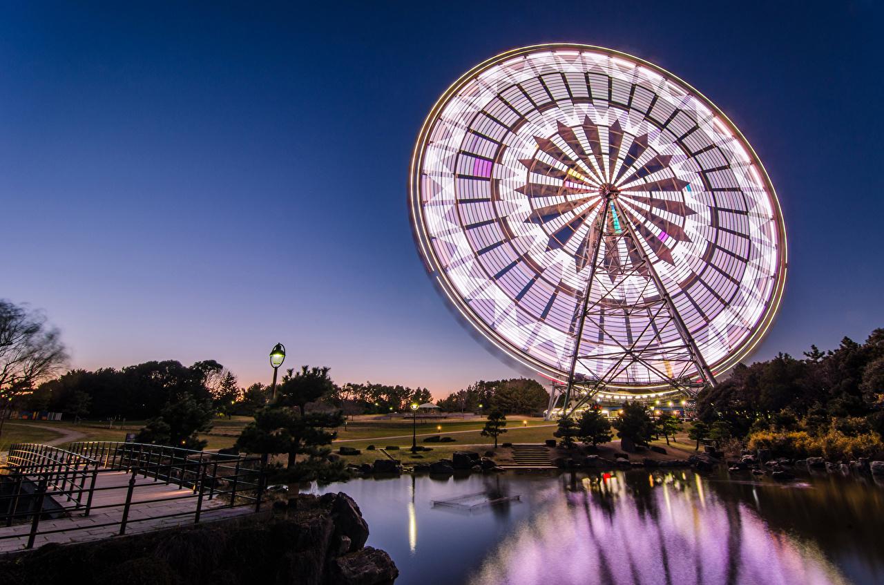 壁紙 日本 池 公園 東京都 夜 観覧車 都市 ダウンロード 写真