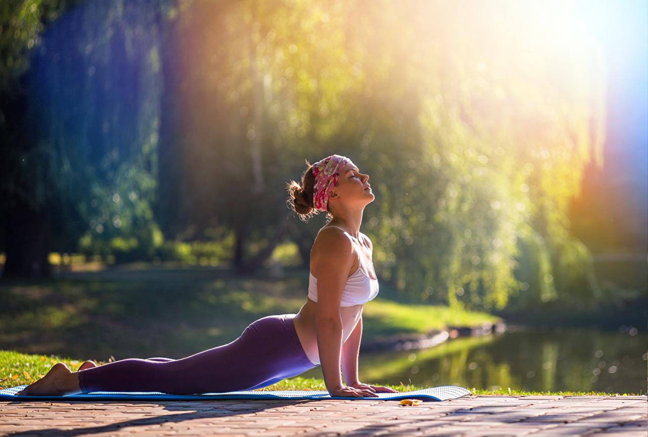 Bilder Unterarmstütz Joga Bokeh posiert Fitness Mädchens Bein Hand Yoga unscharfer Hintergrund Pose junge frau junge Frauen