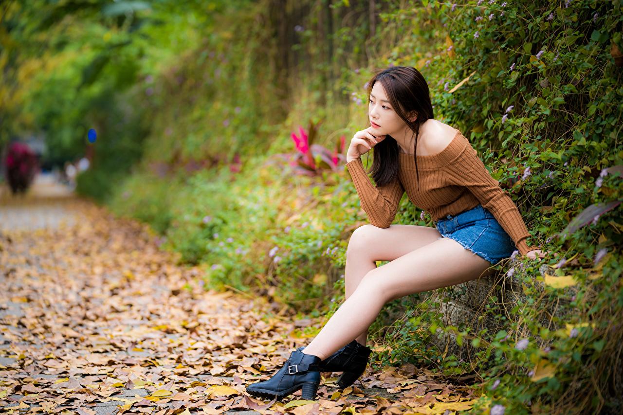 Foton Löv suddig bakgrund Unga kvinnor Ben asiatisk Sitter Blad lövverk Bokeh ung kvinna Asiater