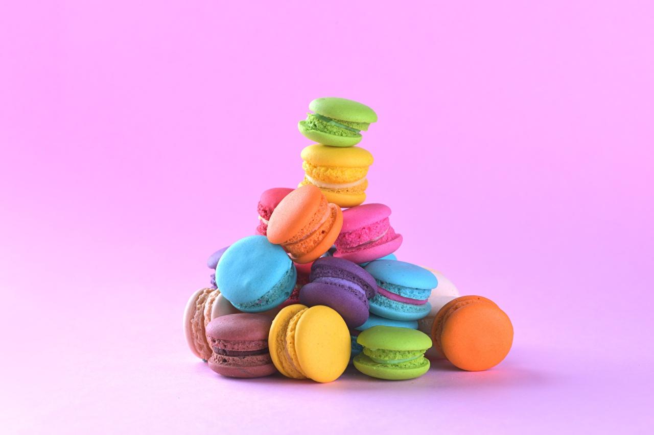 Desktop Wallpapers Macaron Multicolor Food Cookies Pink background french macarons