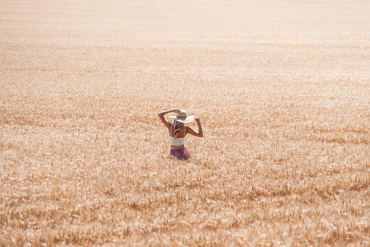 Fotos Blond Mädchen Weizen Der Hut junge frau Felder Blondine Mädchens junge Frauen Acker