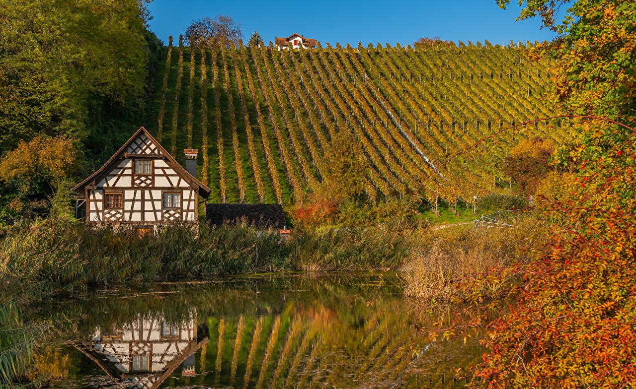Image Switzerland Thurgau Autumn Nature Pond Hill Bush Houses Shrubs Building