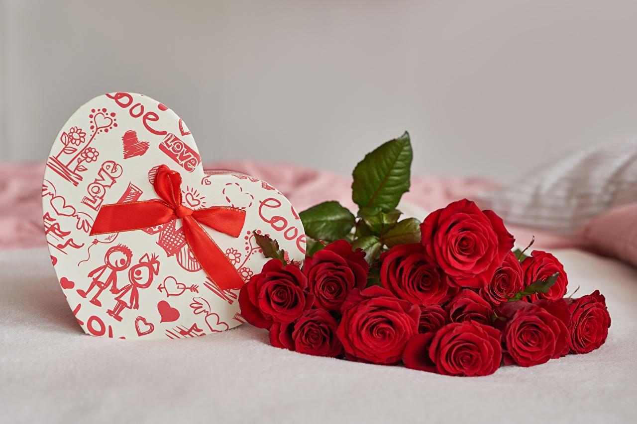 Bilder Valentinstag Herz Blumensträuße Rose Blumen Geschenke Schachtel Schleife Sträuße Rosen Blüte
