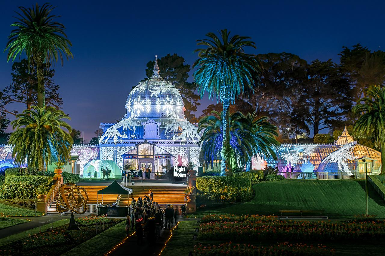 Photo San Francisco USA Golden Gate Park Nature Parks palm trees Lawn Evening Building Design park Palms Houses
