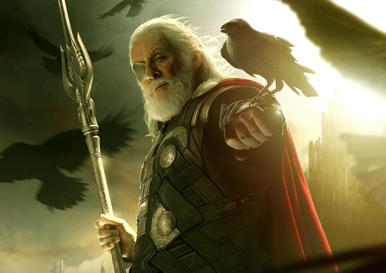 Images Thor Thor: The Dark World Crows Mage Staff Man Eye patch bearded Movies crow Men Beard beards film
