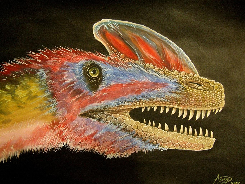Fotos von Alexander Lovegrove Dinosaurier Guanlong wucaii Malerei Kopf Tiere Alte Tiere Gemälde ein Tier