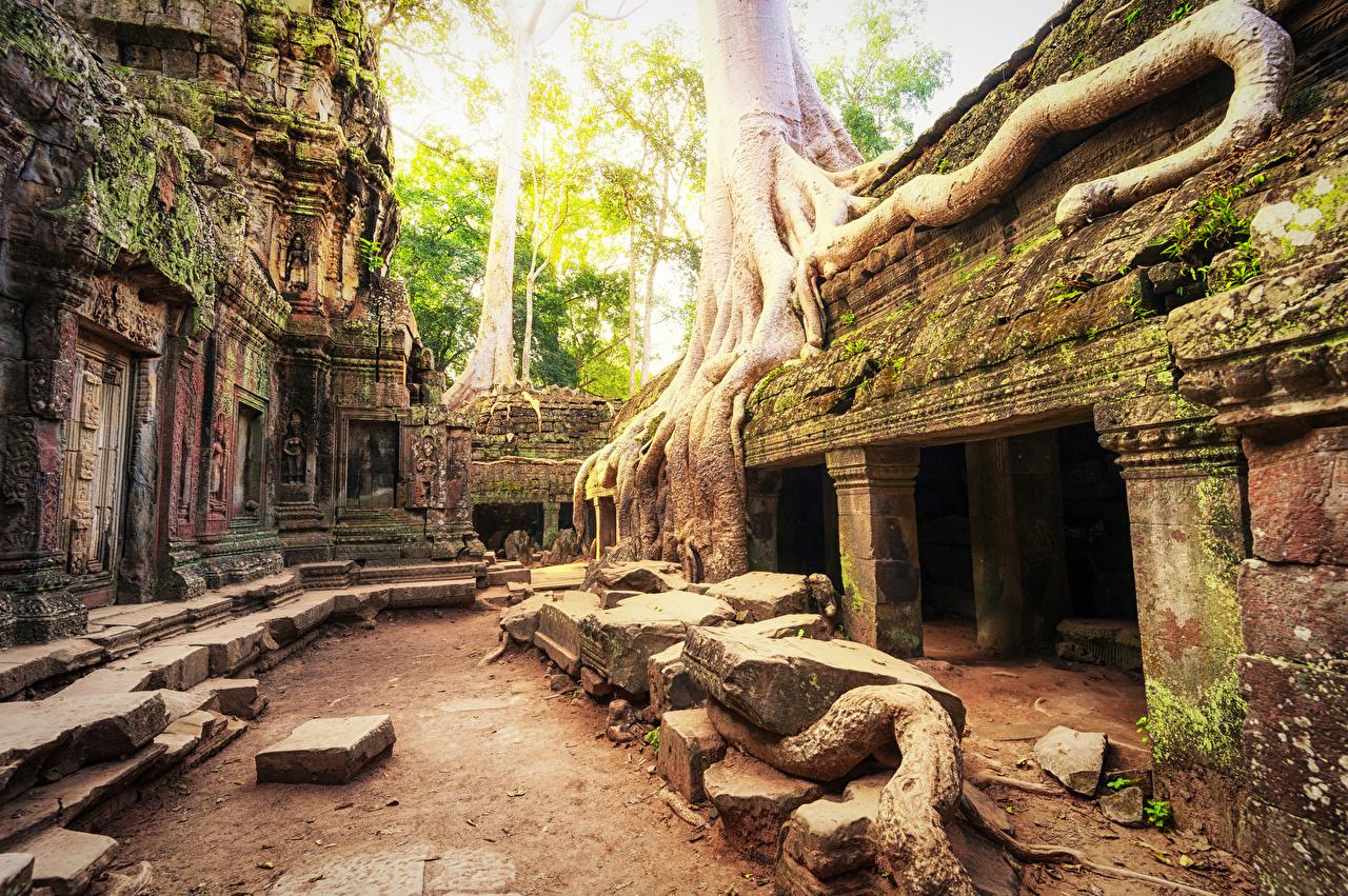 Bakgrunnsbilder Angkor Wat Biggest Hindu temple Cambodia Ruiner Moser Tempel en by ruin Bladmoser byen Byer
