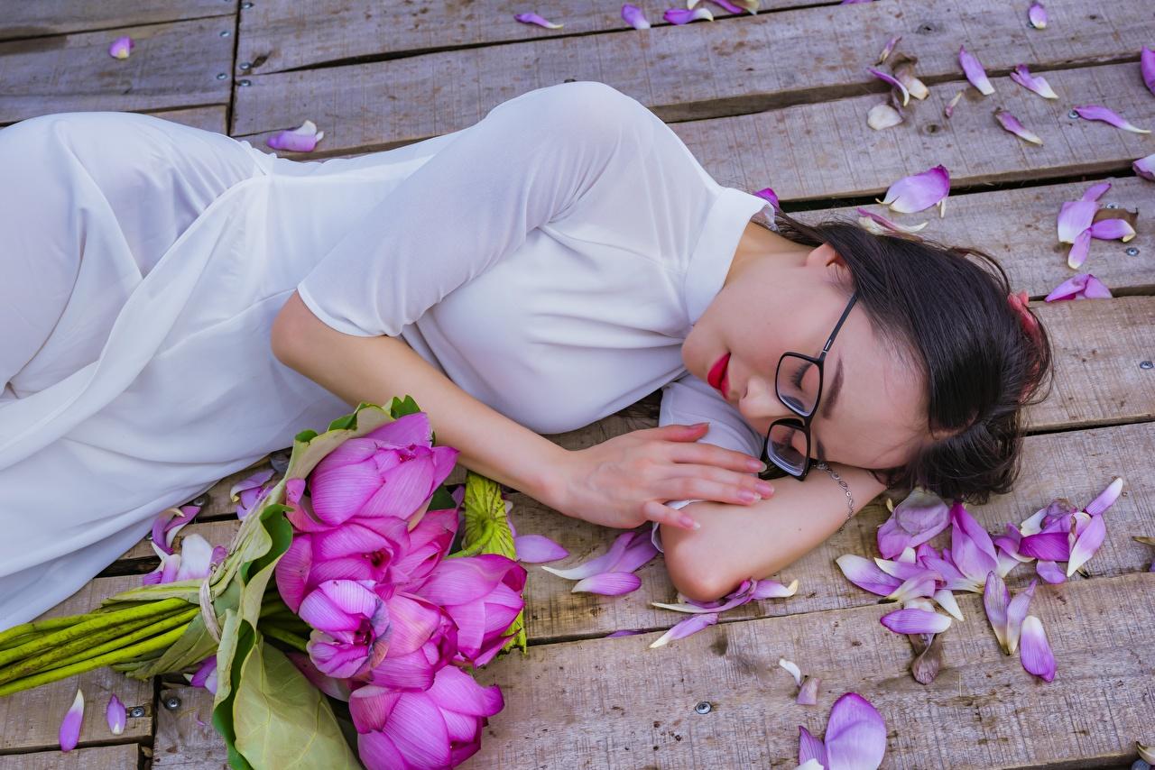 Fotos Brünette Liegen Sträuße junge Frauen Blütenblätter Lotus Asiatische Brille Kleid Bretter Liegt ruhen hinlegen Blumensträuße Mädchens junge frau kronblätter Asiaten Lotosblume asiatisches