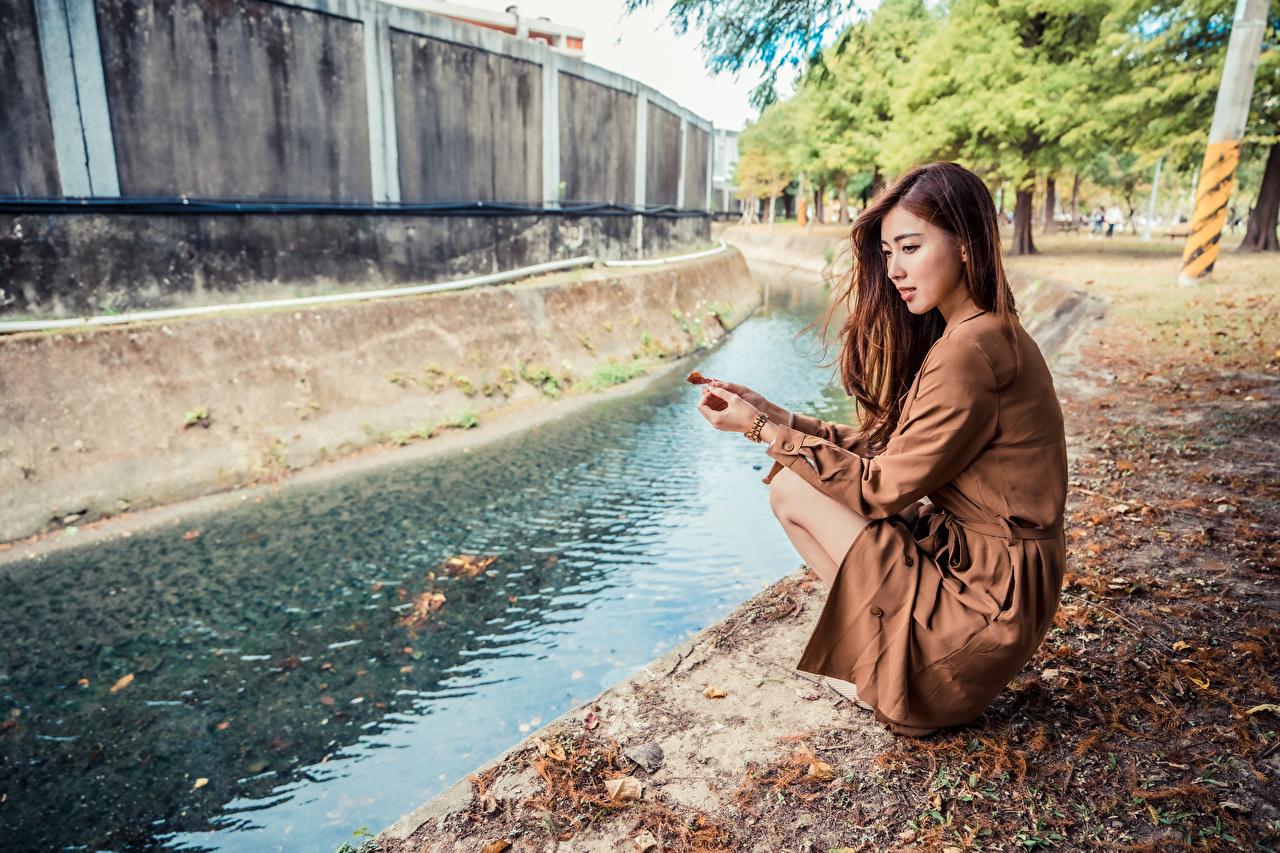 Fotos von Braunhaarige Kanal Mädchens Asiaten sitzt Kleid Braune Haare junge frau junge Frauen Asiatische asiatisches sitzen Sitzend