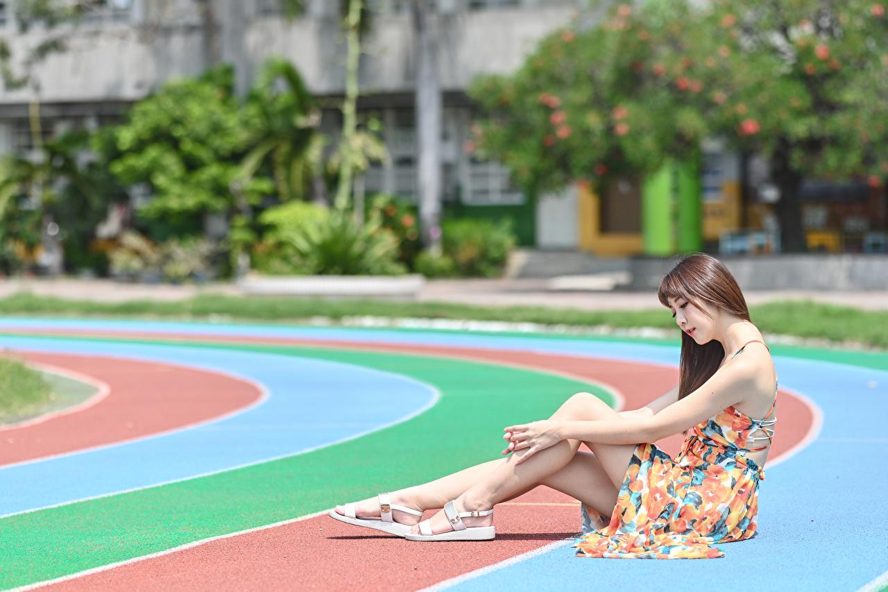 Фото Шатенка Размытый фон девушка ног Азиаты Руки Сидит Платье шатенки боке Девушки молодая женщина молодые женщины Ноги азиатки азиатка рука сидя сидящие платья
