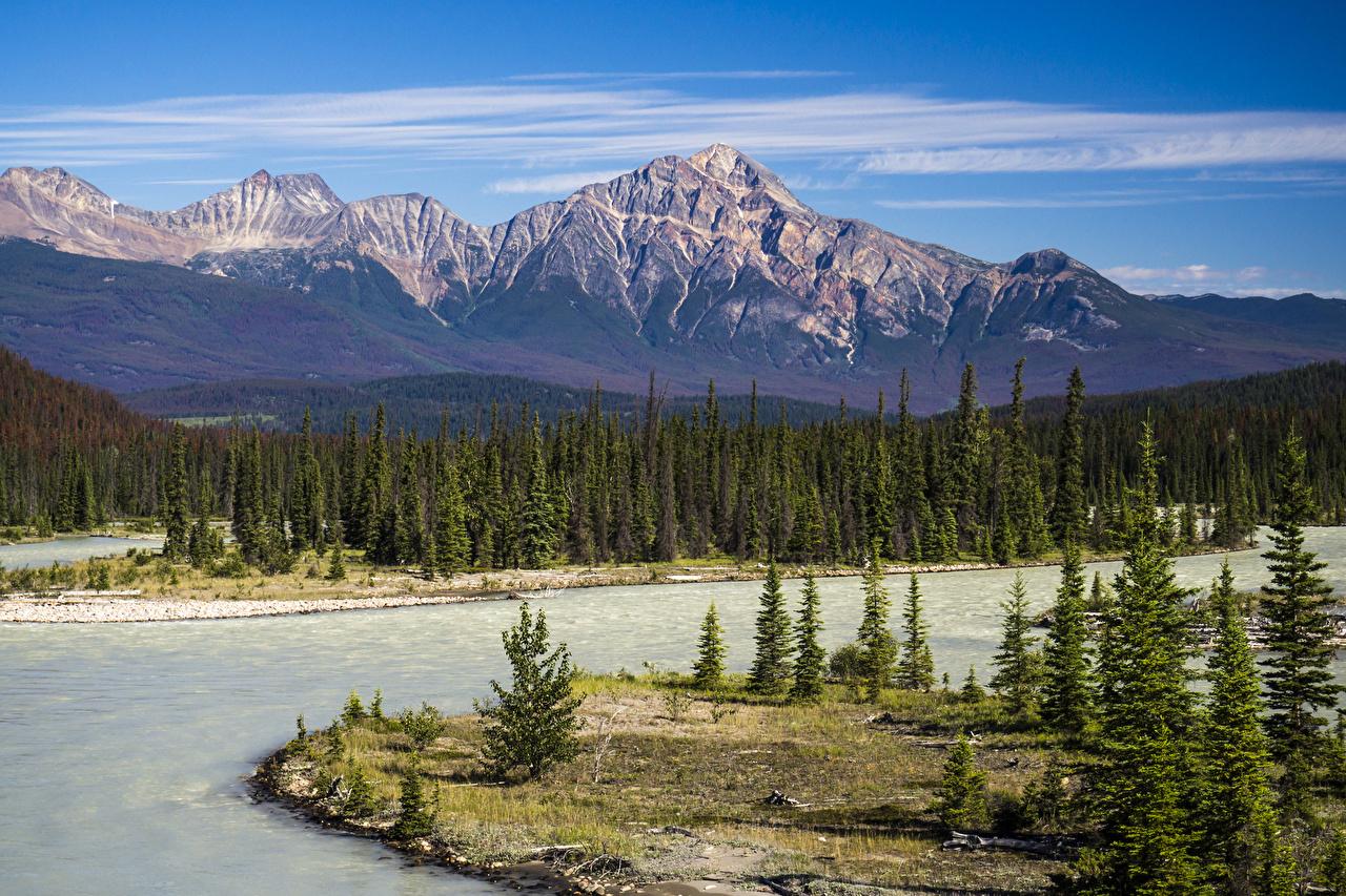 Hintergrundbilder Jasper park Kanada Athabasca River Natur Fichten Gebirge Park Landschaftsfotografie Flusse