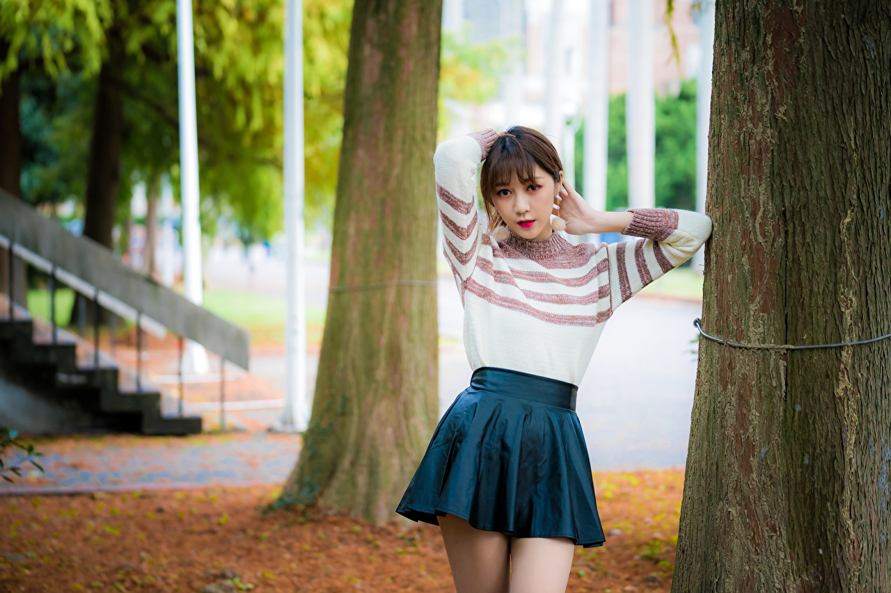Images Skirt Brown haired Bokeh female Asian Sweater Trunk tree blurred background Girls young woman Asiatic