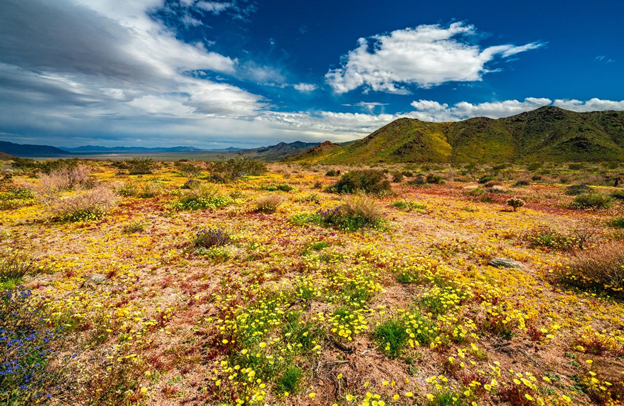 Fotos von Kalifornien USA Joshua Tree National Park Berg Natur Frühling Parks Wolke Vereinigte Staaten Gebirge