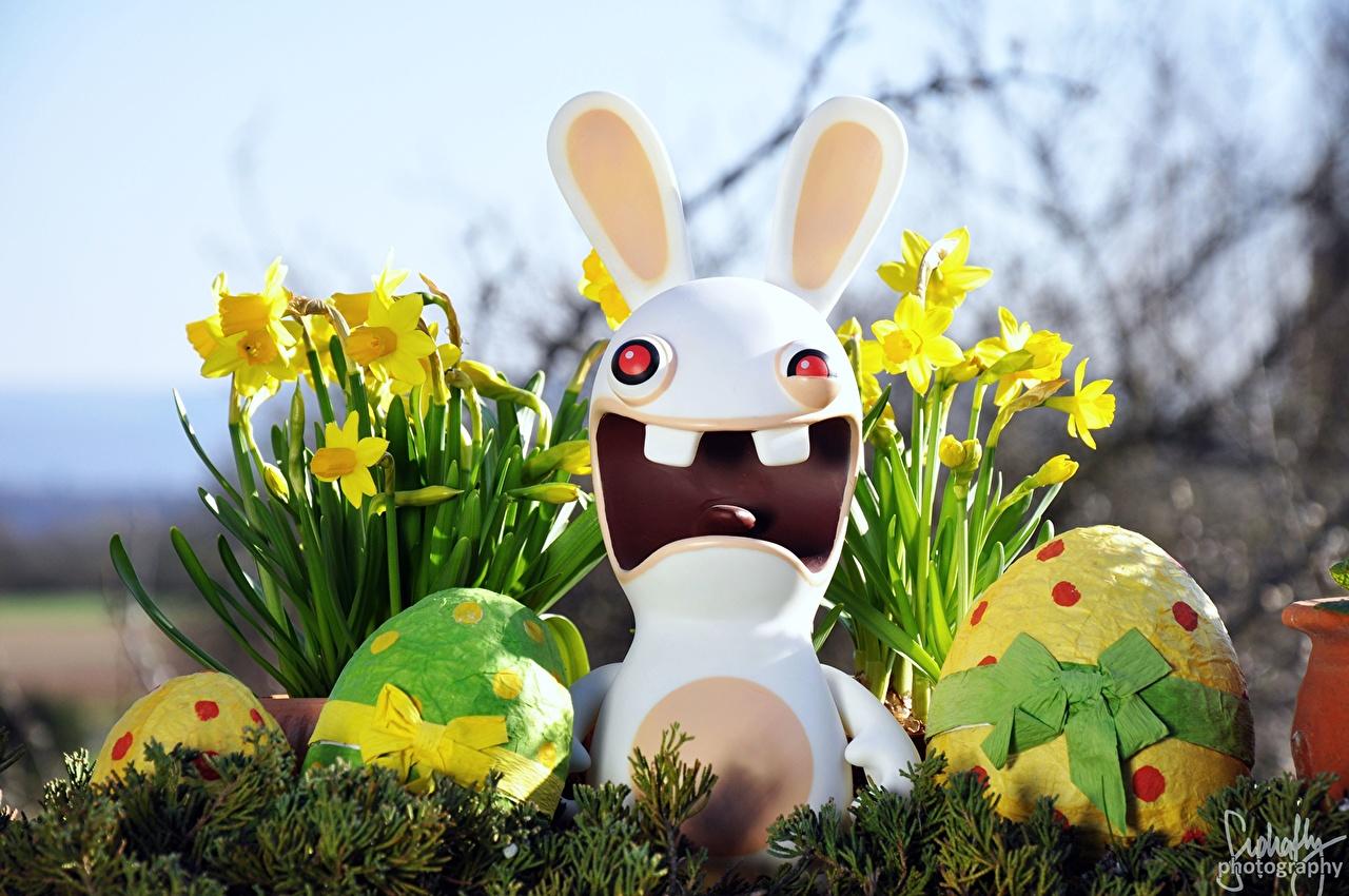 Bilder Ostern Feiertage