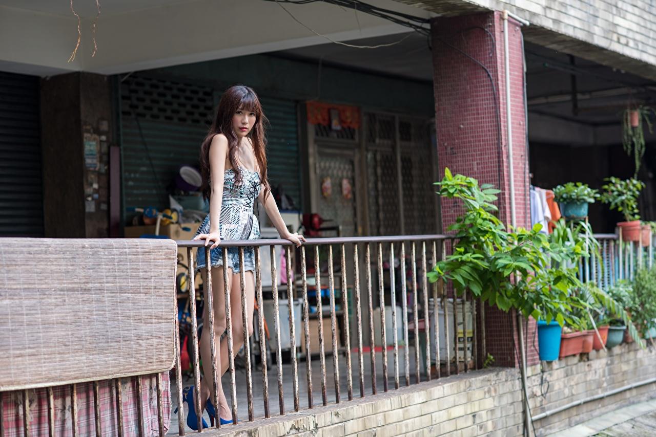 Bilder Braune Haare Mädchens Zaun asiatisches Braunhaarige junge frau junge Frauen Asiaten Asiatische