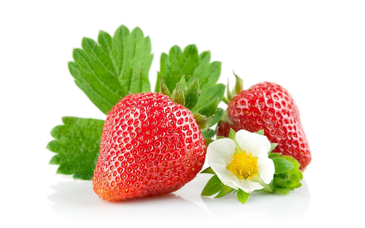 Bilder Erdbeeren Lebensmittel hautnah Weißer hintergrund das Essen Nahaufnahme Großansicht